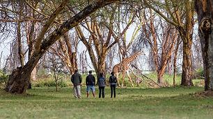 Nature Walks.jpg