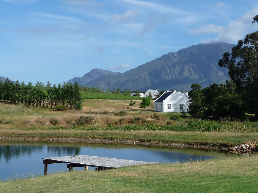 winelands-2011397_1920.jpg