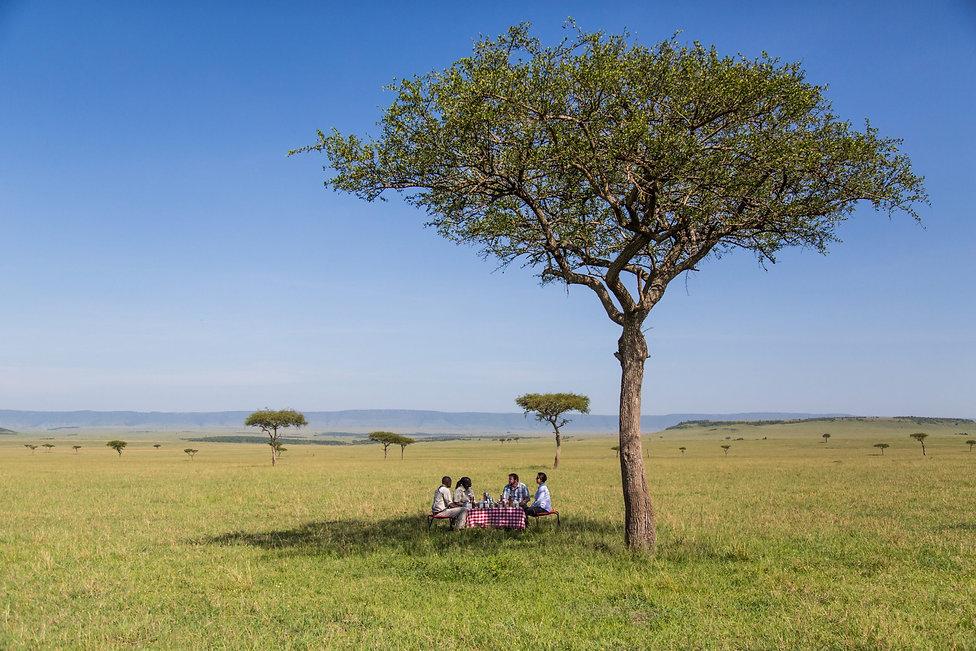angama-picnic-in-the-maasai-mara.jpg