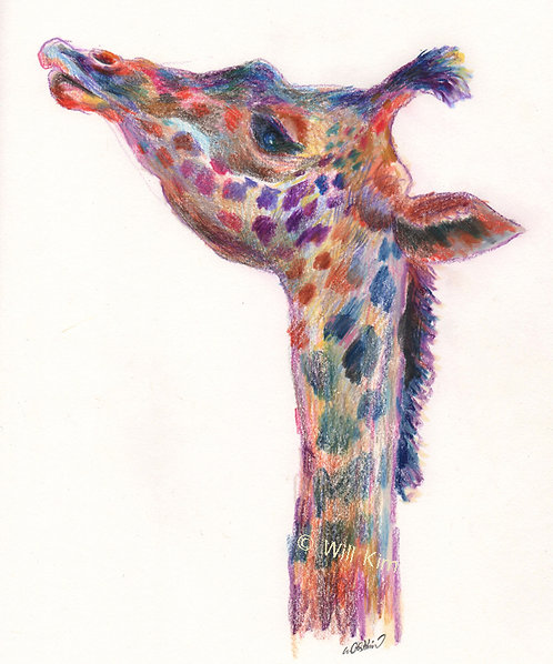 Giraffe Face Watermark Free Digital File
