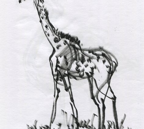 new drawing-001.jpg