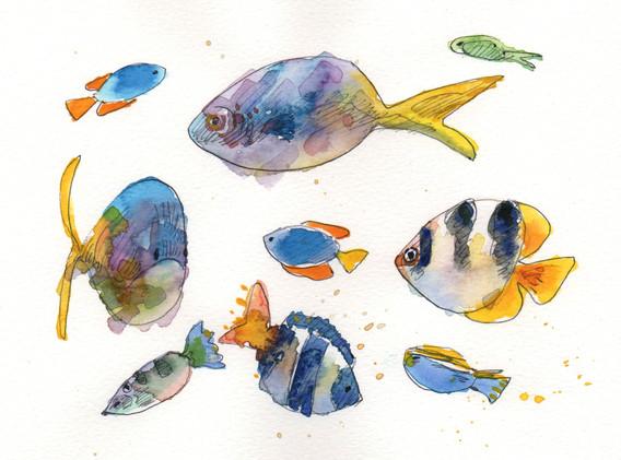 yellowpurplefish001.jpg