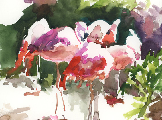 flamingos.jpeg