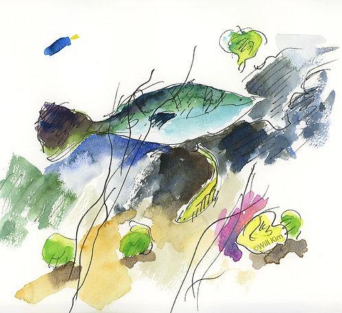 Digital Copy for Printing -Green Fish