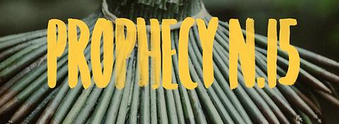 Prophecy n 15.png