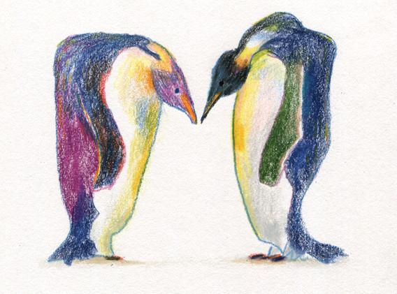 mating-penguin001.jpg