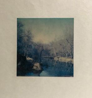 Homage to Rachel Carson I, Winter by Rosemary Fallon