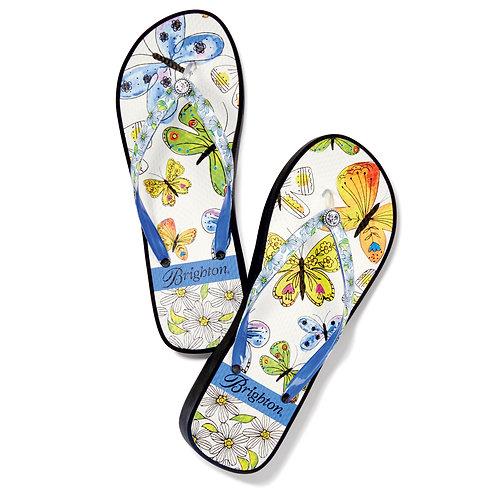 Brighton - Breeze Flip Flops