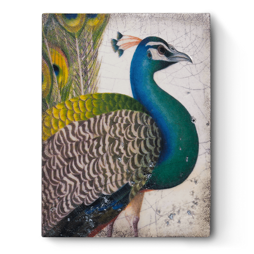 Sid Dickens - Fabled Bird - T287