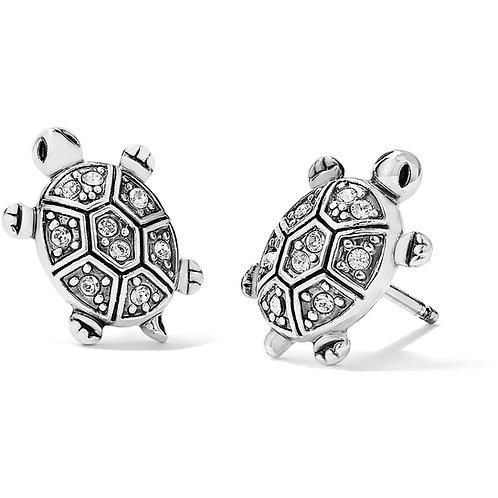 Brighton - Fortune Turtles Mini Post Earrings