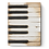 Thumbnail: Sid Dickens - Piano Keys - T45