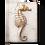 Thumbnail: Sid Dickens - Ocean's Gift - T281