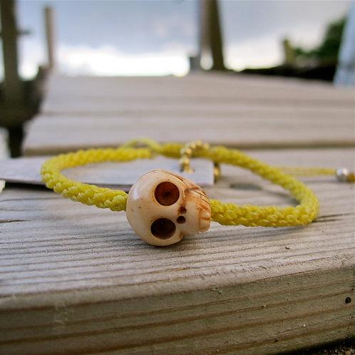 One skull animal Bone Yellow