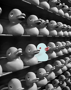 Duck Marketing.png