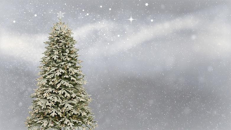 christmas tree writing space.jpg