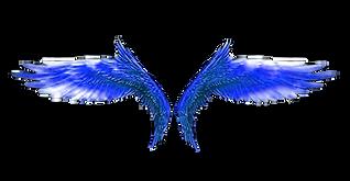 파란색날개4.png