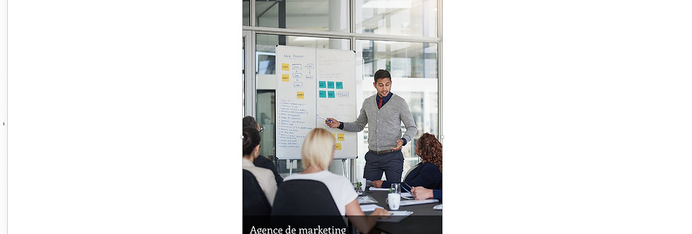 Document Unique Agence de Marketing - Illustration