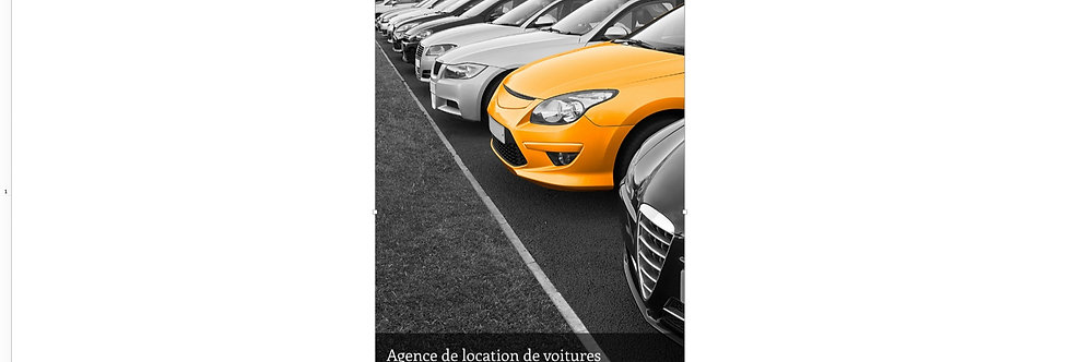Document Unique Agence de location de voitures - Illustration
