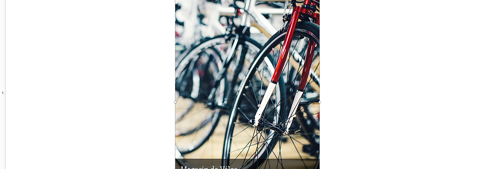 Document Unique Magasin de vélo - Illustration