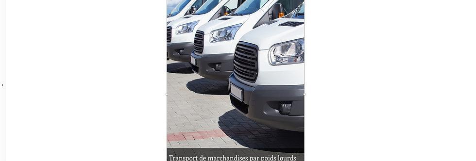 Document Unique Transport de marchandises par véhicules légers - Illustration