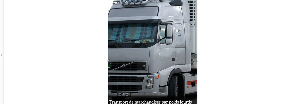 Document Unique Transport de marchandises par poids lourds  - Illustration