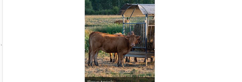 Document Unique Elevage Agricole - Illustration