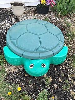 Turtle Lid.jpg