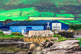 Dingle, Gin Factory