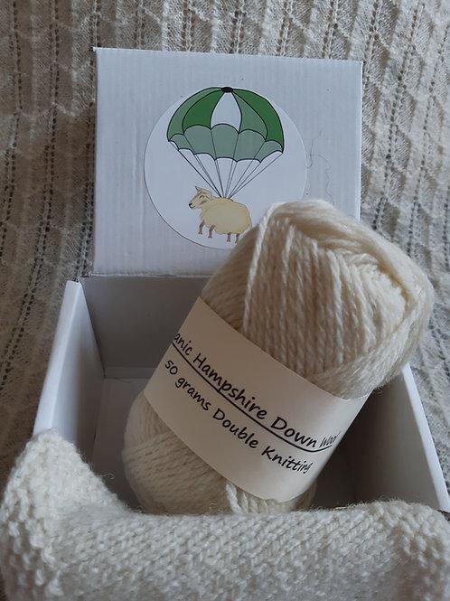 Organic Hampshire Down DK yarn (50g)
