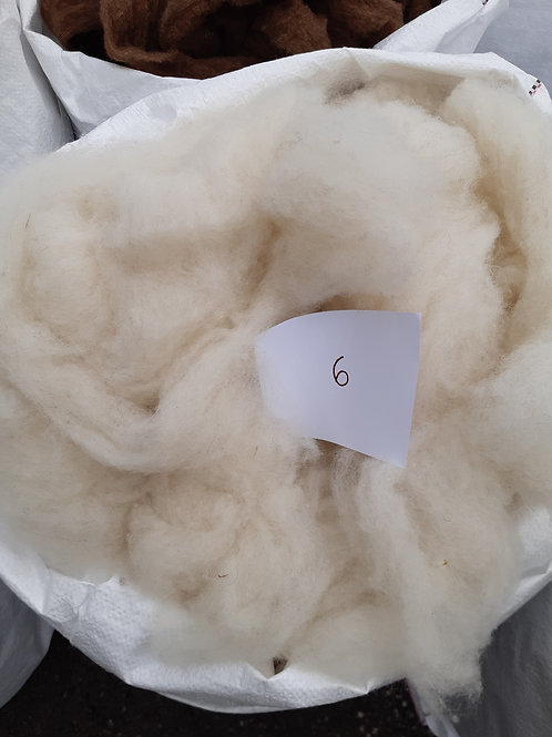6 - 200g Pure British Soft White Alpaca Mix Sliver