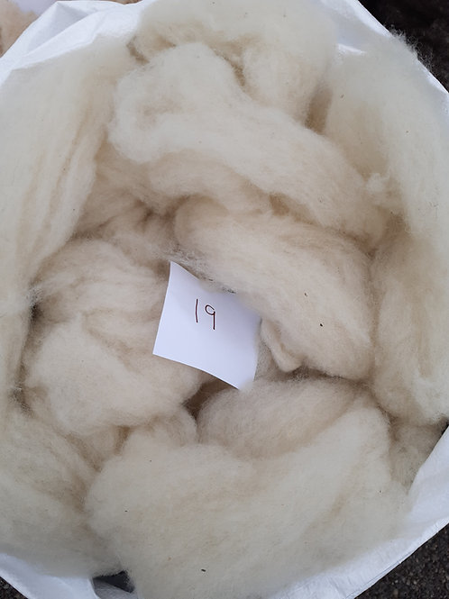19 - 200g Pure British Wool Sliver in Natural White/Cream