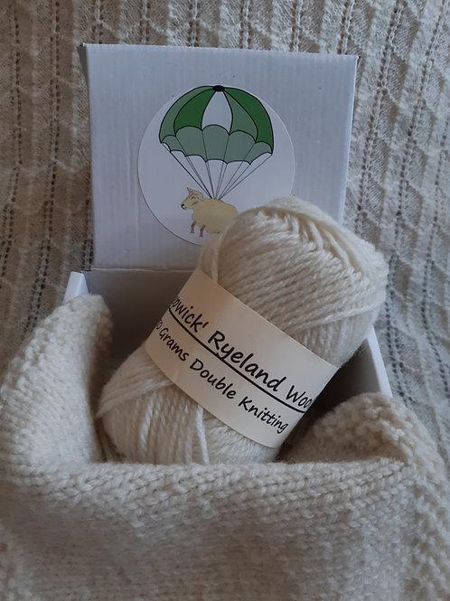 Kepwick Ryeland DK yarn (50g)
