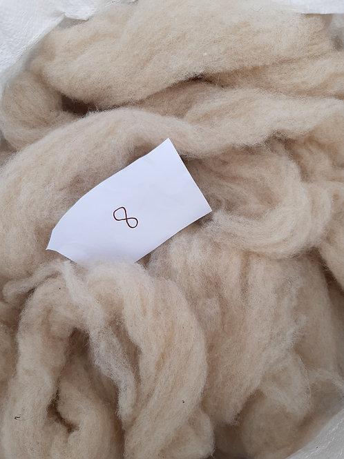 8 - 200g Pure British Shetland Fawn/Beige Sliver