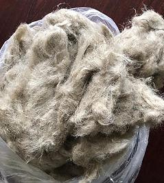Cottonized Fiber