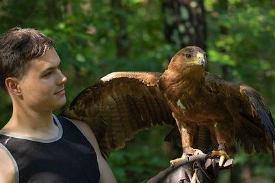 Zulu - Stepp Eagle