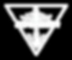 logo acronexion W.png