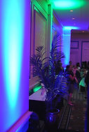 Carolina Ball Room Uplighting 2