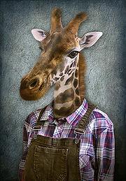 Giraffeinclothes.CODY.jpg