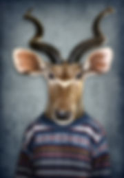 Antelopeinclothes.GENE.jpg