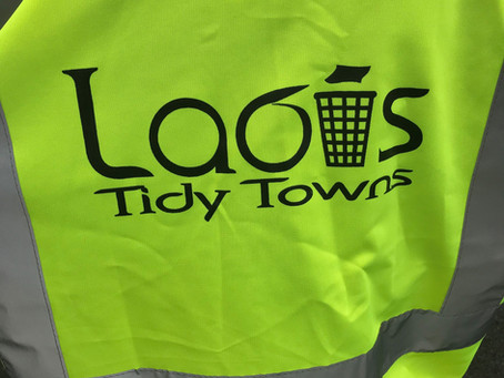 Clean Up with Laois Tidy Towns