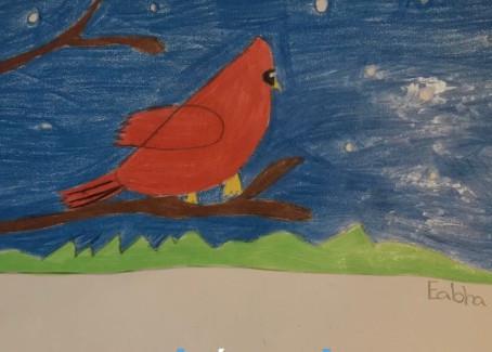 Cardinals by 2nd Class
