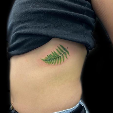 Colour tattoo Fern