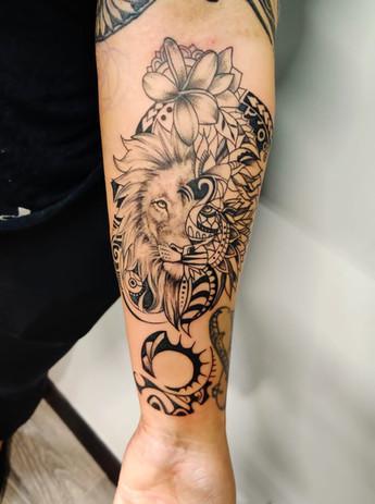 Lion geometry