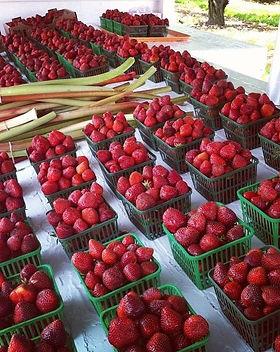 strawberry stand .jpg