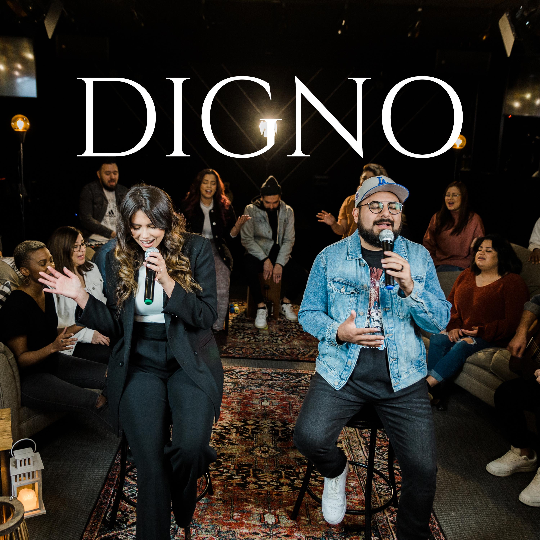 DIGNO COVER