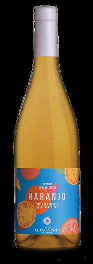botella-naranjo-01.png