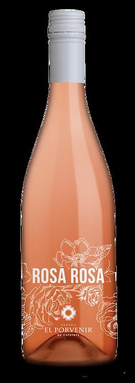 Rosa Rosa 2