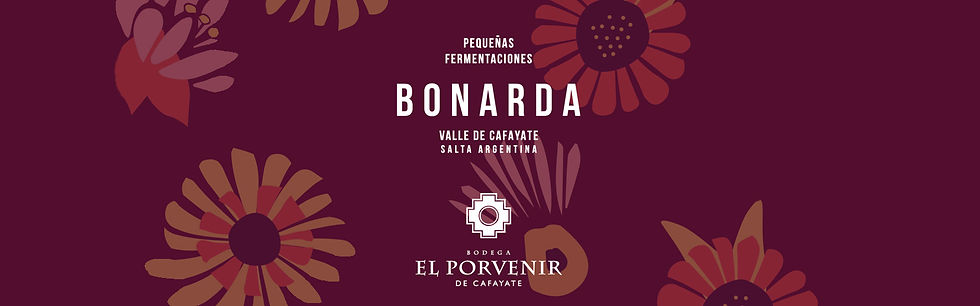 header-wines-bonarda-01 (1).jpg
