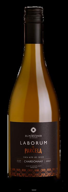 Chardonnay de Finca Alto Los Cuises