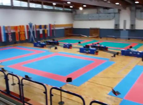 XIX OPEN INTERNAZIONALE WKF